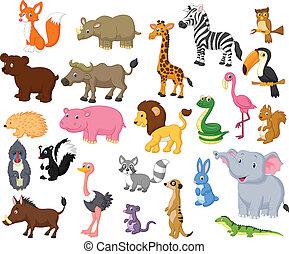 Vector illustration of Wild animal cartoon collection
