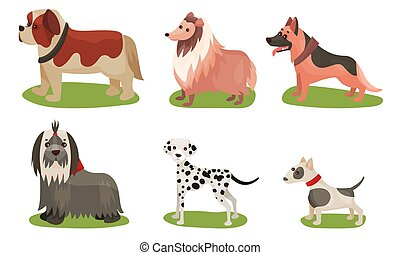 Vector Illustration Set With Dogs Breed Isolated On White Background
