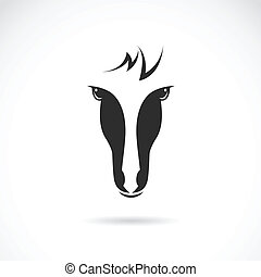 Vector image of an horse face