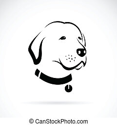 Vector image of an Labrador dog's head on white background