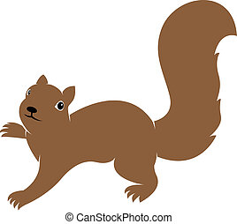 Vector image of an squirrel on white background