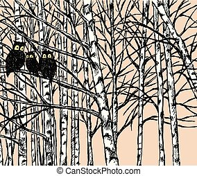 Vector image of owls in the birch forest