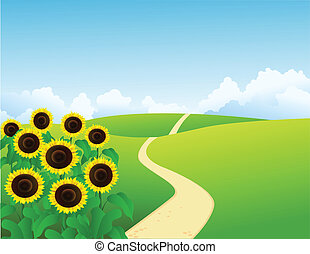 Vector landscape with sunflowers
