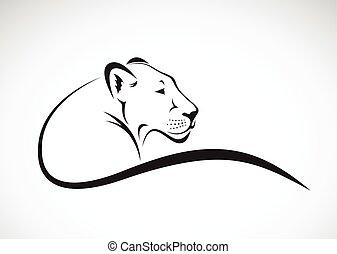 Vector of a lion female design on white background, Wild Animals.