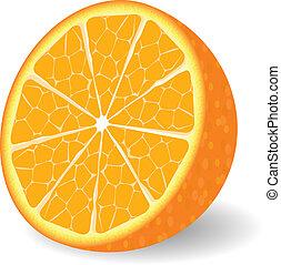 Vector orange fruit isolated over white