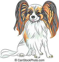 color sketch Papillon red and black dog with long shaggy ears