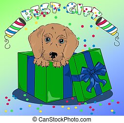 vector puppy in colored box with confetti best gift to baby