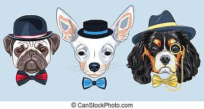 vector Set of cartoon hipster dogs