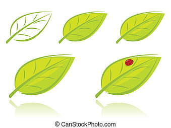 Vector set of green leaves