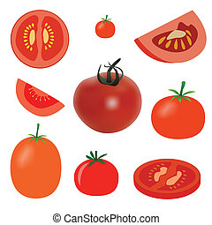 vector set of tomato on the white background