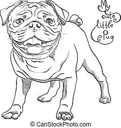 vector sketch cute dog black pug breed