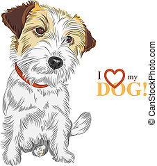 color sketch of the wire-haired dog Jack Russell Terrier breed