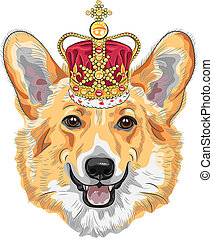 color sketch of the dog Pembroke Welsh corgi breed in gold crown