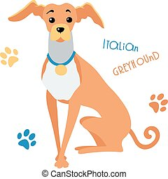 Vector sketch funny Italian Greyhound dog sitting