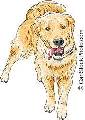 vector sketch happy dog breed Labrador Retriever smiling