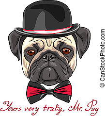 color sketch hipster serious dog fawn pug breed in a hat and bow tie