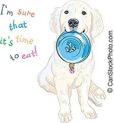 vector sketch whte puppy dog breed Labrador Retriever sitting