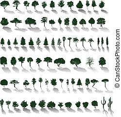 Set of vector silhouettes of trees and bushes with shadows