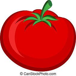 Vegitable/ Fruit Tomato