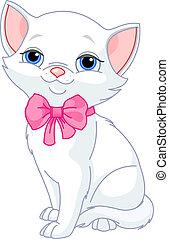 Very Cute white cat