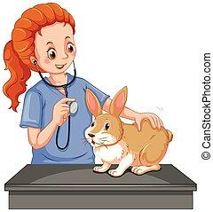 Vet examining little bunny illustration