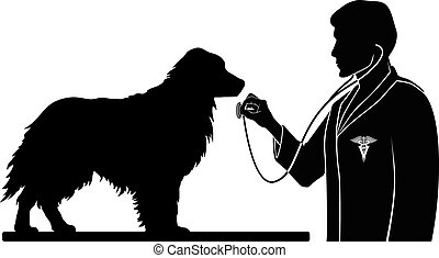 Illustration of a design for a vet or veterinarian. Includes images of a dog, a veterinarian with stethoscope and a veterinarian symbol.