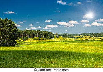 vibrant image of rural landscape