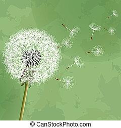 Vintage floral green background with flower dandelion. Invitation or greeting card. Vector illustration