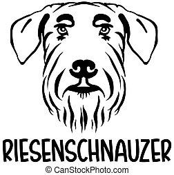 Weimeraner head german