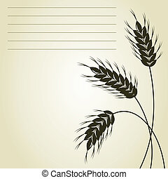 Three ears of wheat on a grey background. A vector illustration
