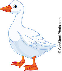 Illustration of white domestic goose isolated on white background