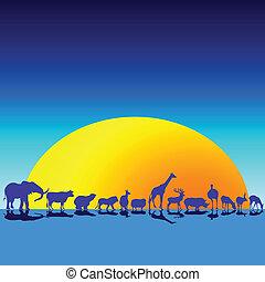 wild animals in the twilight