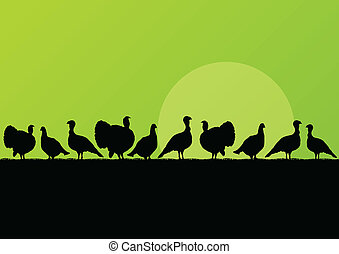 Wild turkey hunting season silhouettes in countryside landscape illustration background vector