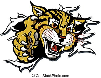 wildcat or bobcat mascot ripping through the background for school, college or league