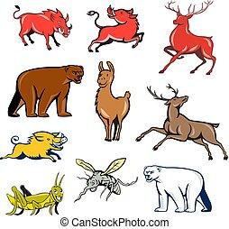 wildlife-animals-CARTOON-SET-010