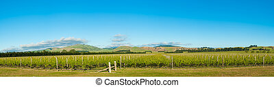 Winery of New Zealand