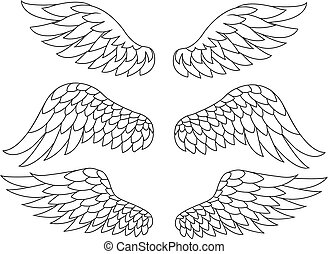 Wing silhouette