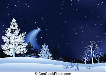 Winter landscape with shooting star.