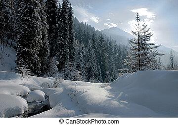 Winter on mountain side