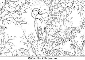 Woodpecker on a tree branch