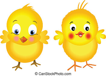 Image representing a yellow chicks, isolated on white, vector design.
