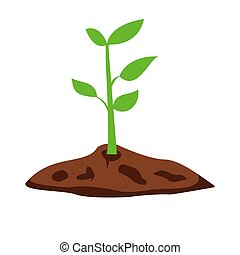 Young tree royalty free vector image