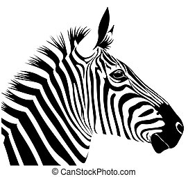 illustration of zebra head in line art style