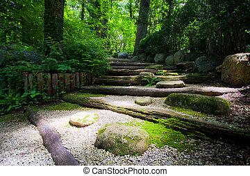 Light leading into dark forest in Japanese zen garden
